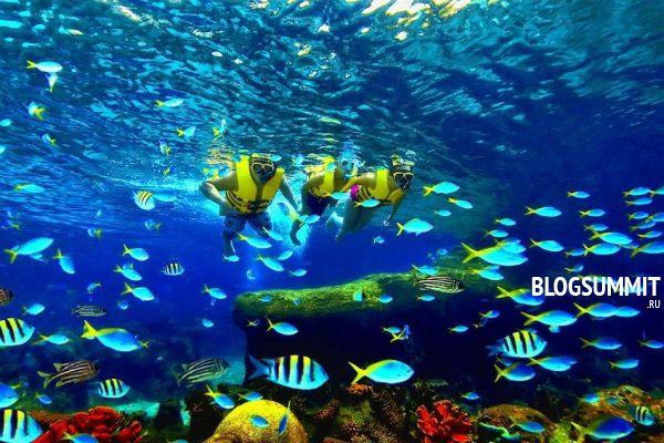 Самый большой в Турции аквариум