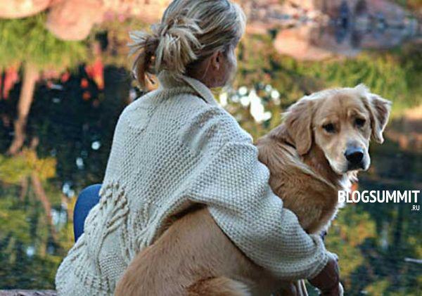 Быть другом питомцу - вот как дрессировать собаку правильно