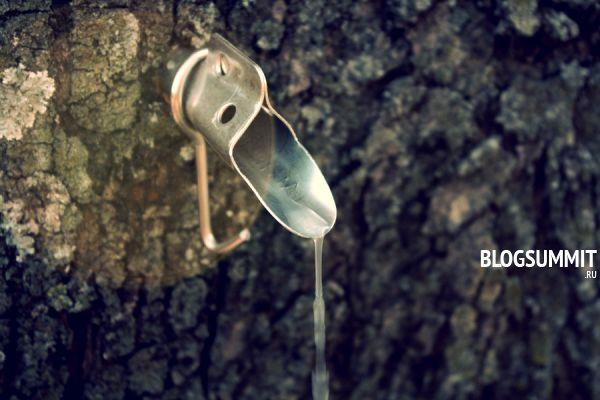 Березовый сок - сокровищница для человеческого организма