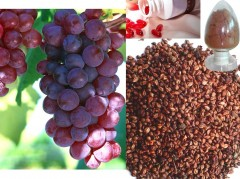 Чем полезен виноград для здоровья